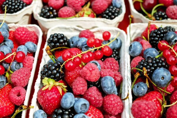 Best 5 Superfoods That Can Help In Boosting Your Immune System